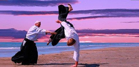 Aikido-large