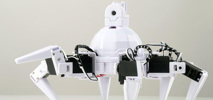 Уникальная выставка живых роботов «Smart Robots» на ВДНХ