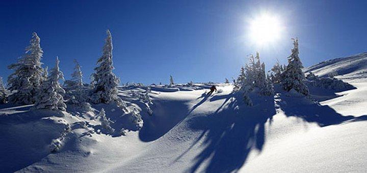 От 4 дней горнолыжного отдыха на Новый год в отеле «Дзвінка» в Славском