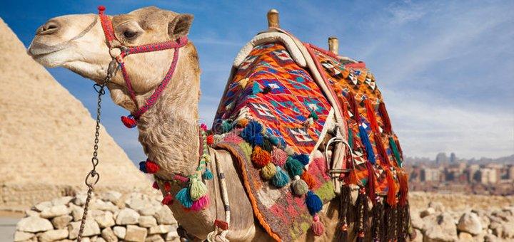Скидка 851 грн на все туры в Египет и Турцию на весь март от компании «Дарья Тур»