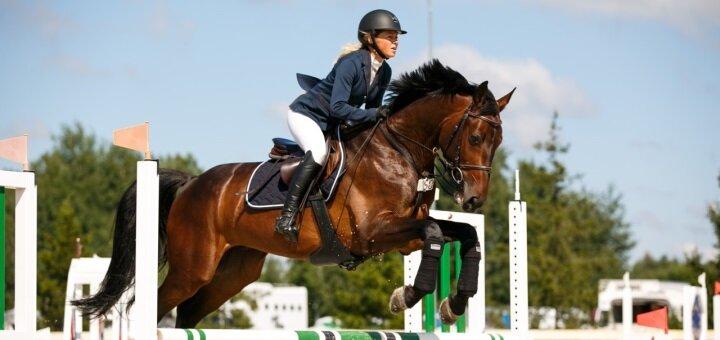 Скидка до 52% на прокат лошадей с тренером в конном клубе «IloveMyHorse»