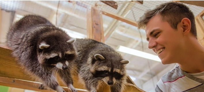 Посещение контактного зоопарка для взрослых и детей в сети «Макки-Пакки»
