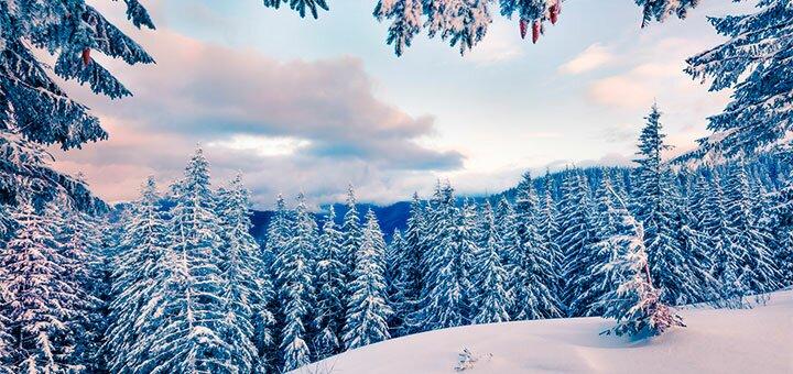 От 4 дней отдыха на Рождество в отеле «Дан» в Драгобрате