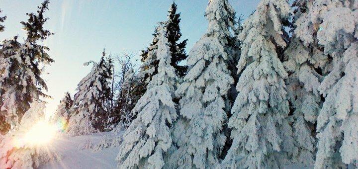 All inclusive по-карпатски: теплые бассейны, мастер-классы по лыжам в комплексе «Admiral-SPA»