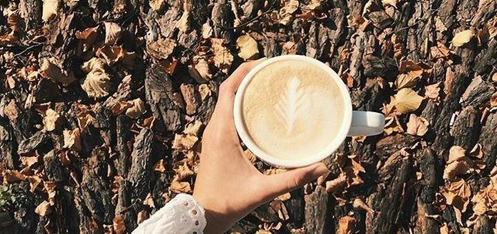 Скидка до 50% на напитки и продукцию цветочного бутика в кофейне «Кава Квіти»