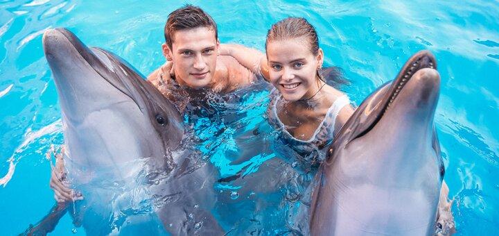 Скидка 44% на занятия по программе «Юный тренер» в дельфинарии «Немо»